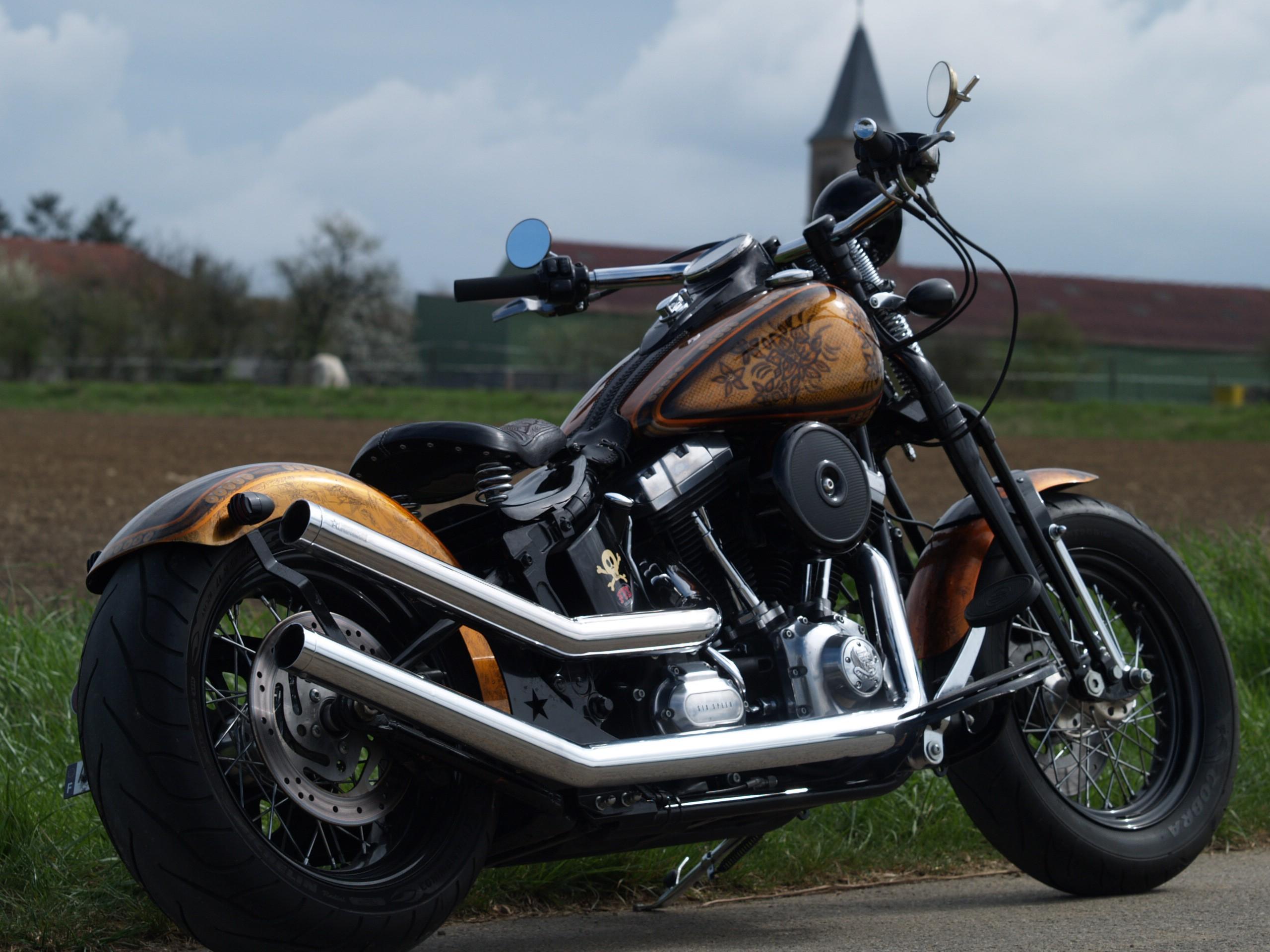 Harley Davidson Flstsb 1584 Softail Cross Bones Jlm