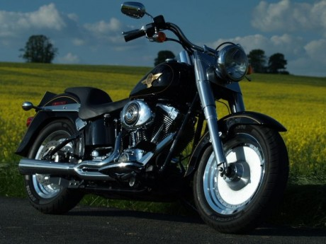 Harley Davidson Fat Boy 1450 2005 Anniversary